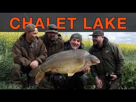 BIG CARP @ CHALET LAKE