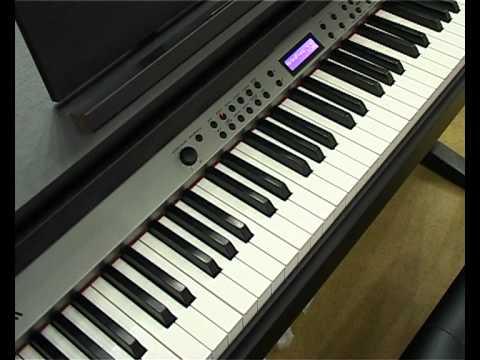 Как выбрать? Синтезатор. Цифровое пианино.