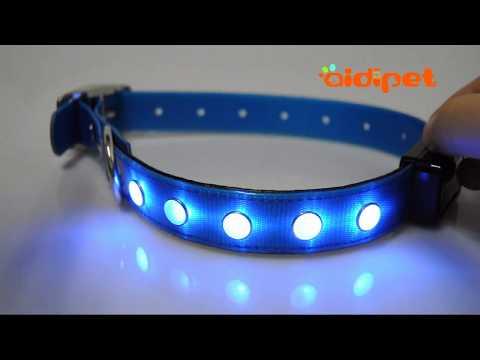 AIDIPET TPU Coating Nylon LED Dog Collar