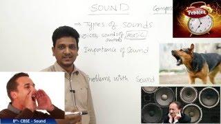 Sound | Class 8th Science-Physics | NCERT | CBSE Syllabus | Live Videos