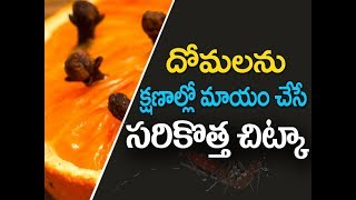 Domalu povalante | How to rid mosquitoes in the house | domalu rakunda chitkalu | kitchen tips