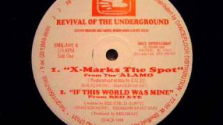 The Alamo - X Marks The Spot