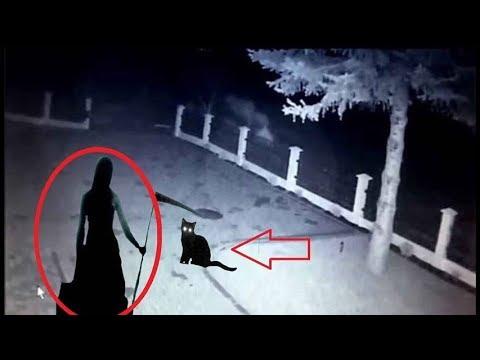 Este Vídeo Demuestra Que las Brujas Existen y se Convierten en Gatos (Pacto Con el Diablo)