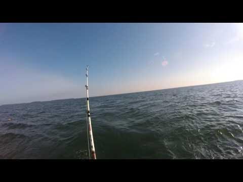 Fishing Lake Erie 071716