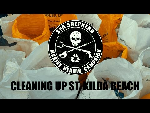 Marine Debris Campaign: Cleaning up the Sea Shepherd way at St Kilda Beach