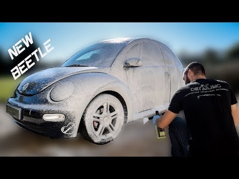 Detailing Volkswagen New Beetle By MP DETAILING