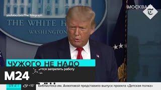 Трамп пригрозил запретить TikTok - Москва 24