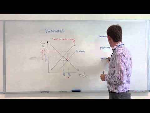Microeconomics - Subsidies