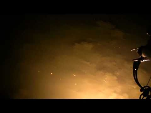 Bowfishing Tilapia at Night with Airboat and Gator Charters