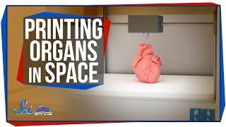 3D Printing Organs in Space