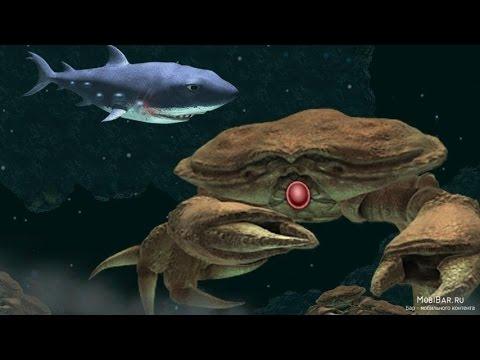 Как убить гигантского краба в игре hungry shark