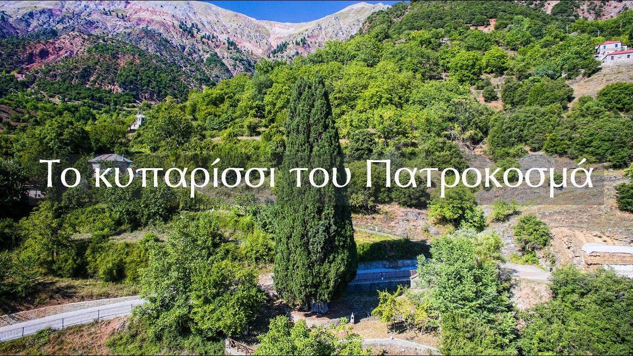 Το κυπαρίσσι του Πατροκοσμά στην Πρασιά Αγράφων - YouTube