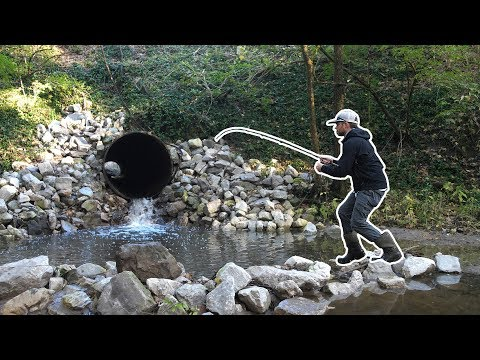 Tiny SPILLWAY HIDDEN In The WOODS!!! (Surprise Catch)