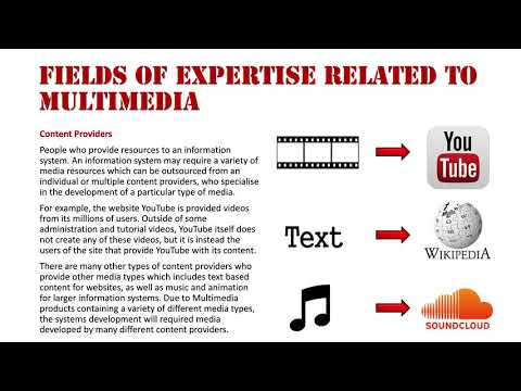 Fields of Expertise Related to Multimedia: Content Providers