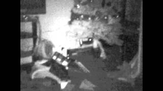 Ghost/light entities caught on night vision cam