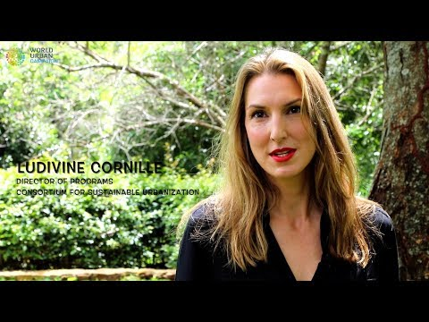 #UrbanThinkers Voices Part II | Ludivine Cornille | Consortium for Sustainable Urbanization