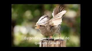 El Condor Pasa  -  Simon & Garfunkel (com legenda)