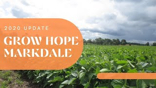 Grow Markdale 2020 Update