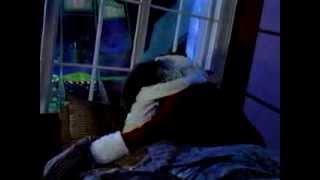 Must Be Santa (1999)