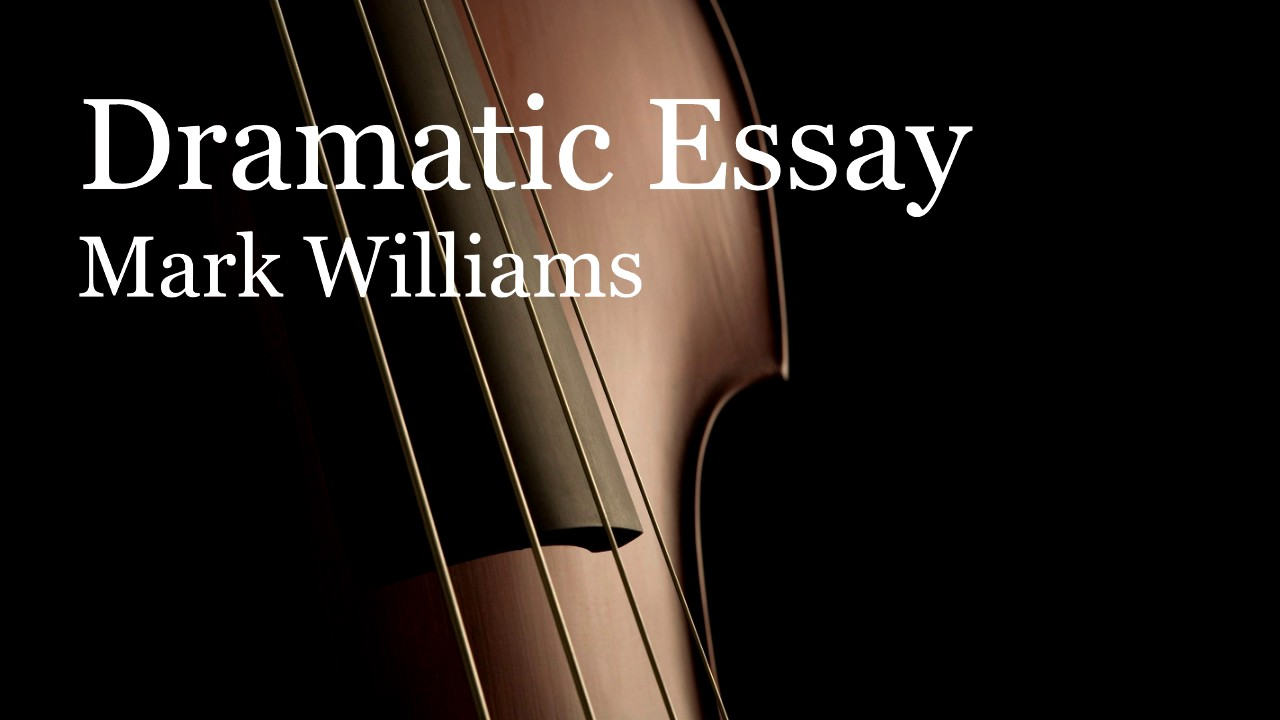 essays on violin pedagogy 27 essays on various aspects of violin teaching such as a very readable work by the 30-year professional of violin, viola, and string pedagogy at michigan state.