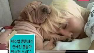 예쁜 얼굴 강아지 사랑도 예쁘게^^
