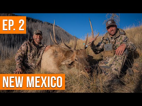 His FIRST Elk! | New Mexico Sweepstakes Elk Hunt (EP. 2)