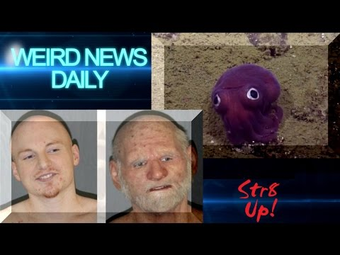 Disguise FAIL, Cute Squid Discovery and more! | Weird News Daily for Sunday, Aug. 21, 2016