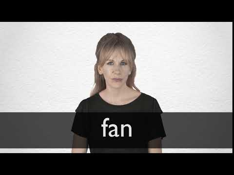 Skalk Lógicamente prioridad  Fan Synonyms   Collins English Thesaurus
