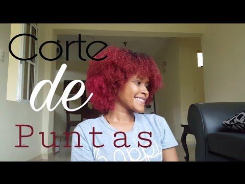 Como cortar las puntas del cabello rizado en casa  •Linda Afro• 🦋