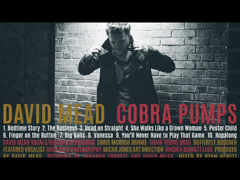 DAVID MEAD- THE BUSINESS (AUDIO from COBRA PUMPS) Mp3