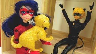 LadyBug et Chat Noir. Vidéo pour enfants. Nourrir le chien
