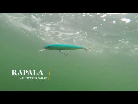 How Lures Swim: Rapala Saltwater X-Rap