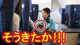 【海外の反応】中国人「どうせ日本人は謝罪するだろう!」と思っていたら…「そうきたか!」全日空CAのまさかの対応に驚愕し完敗【海外が感動する日本の力】