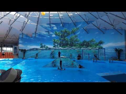 ДЖУБГА /Часть:1 Дельфинарий.Лучший отдых 2019