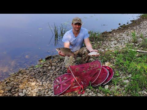 #Рыбалка на Оке, июнь на рыбалку плюнь#Рыбалка донками на Оке#Рыбалка спинингом на Оке