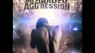 Misguided Aggression - The Visionary