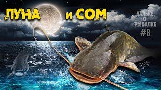 Влияние луны на клёв сома Рыбалка и фазы луны Дальке о рыбалке 8
