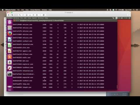 Unpacking Virut.ce - Using Volatility