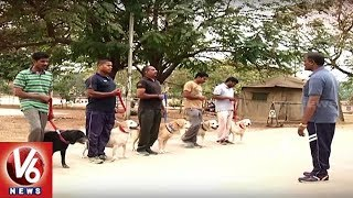 Watch Ground Report On Police Dog Training At integrated intelligen...