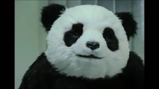 Funny Panda Videos with Subtitles - 5M Views Very Soon :)