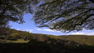 Courses de la Massane - Argelès-sur-Mer