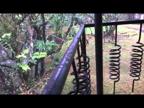 Ambalama Leisure Lounge Balcony View - Sri Lanka