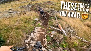 THESE TRAILS WILL BĻOW YOU AWAY!! MOUNTAINBIKING AT ITS FINEST! 🤯