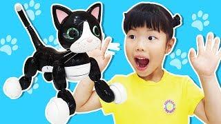 유니에게 재롱둥이 고양이가 나타났어요!! Yuni plays with funny Toy Cat 줌머키티 Zoomer kitty - 로미유 스토리 Romiyu Story