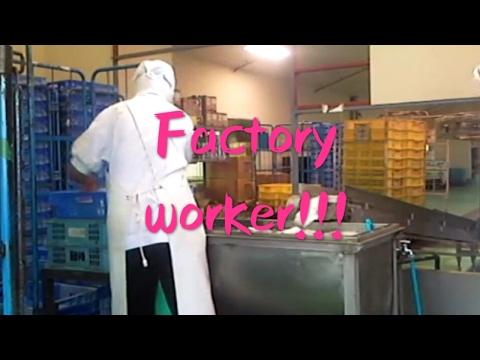 Factory worker in japan!