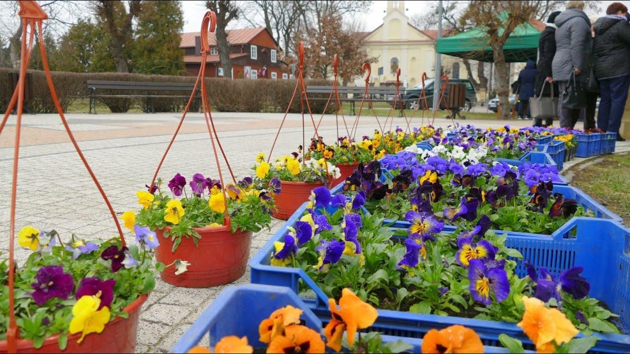 Powitanie Wiosny 21032019