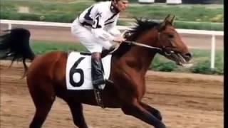 Equus Liber. 1 серия: Железо, часть 2-ая