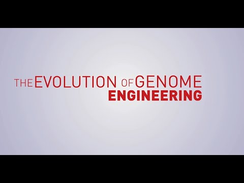 The Evolution of Genome Engineering