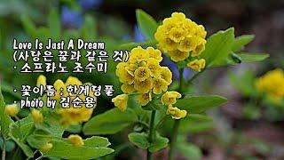 Love Is Just A Dream (사랑은 꿈과 같은 것)/소프라노 조수미 & photo by 김순용