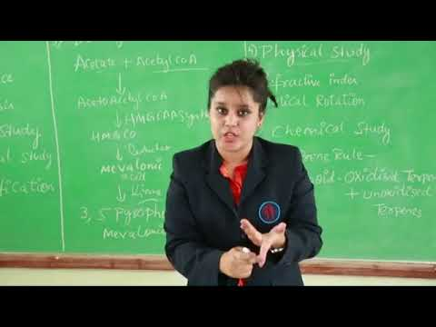 Saira Khan,T John College of Pharmacy, Bangalore